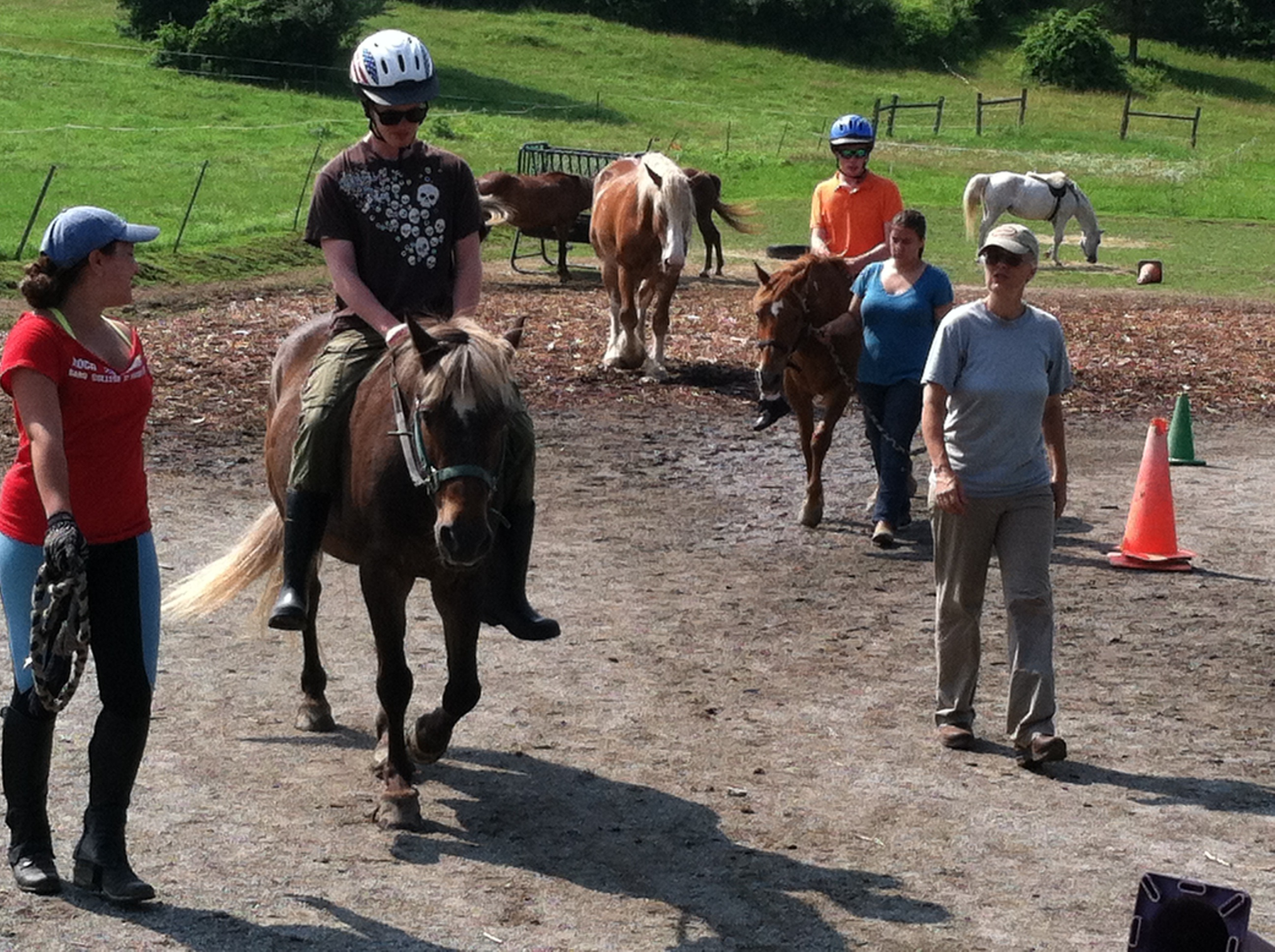 Summer Camp Is In Full Swing Blue Rider Stables Inc
